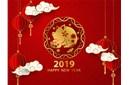 伟航携全体员工祝2019年猪年福气到!